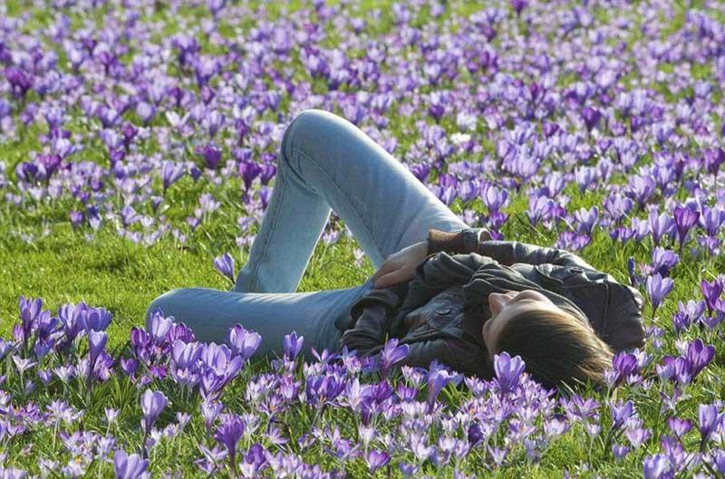 Fuentes del marques en primavera
